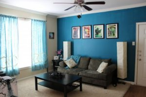 colores-de-pintura-salon-azul-paredes-sofa-negro